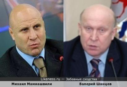 Михаил Мамиашвили и Валерий Шанцев