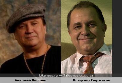 Анатолий Полотно похож на Владимира Стержакова