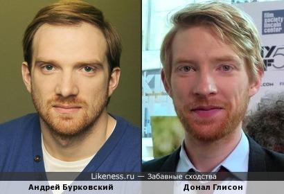 Андрей Бурковский и Донал Глисон