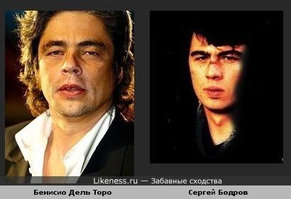 Бенисио Дель Торо похож на Сергея Бодрова