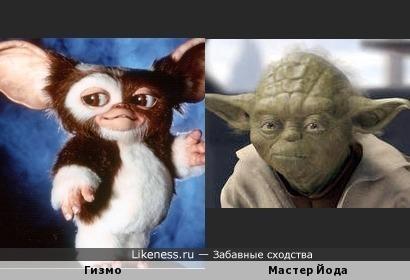 Гизмо и Мастер Йода