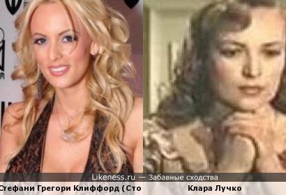 Стефани Грегори Клиффорд (Сторми Дэниэлс) похожа на Клару Лучко