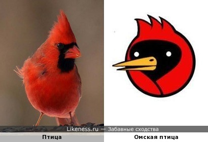 У Омской птицы есть прототип