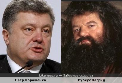Петр Порошенко похож на Рубеуса Хагрида