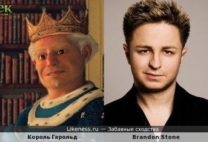 Король Гарольд похож на Brandon Stone