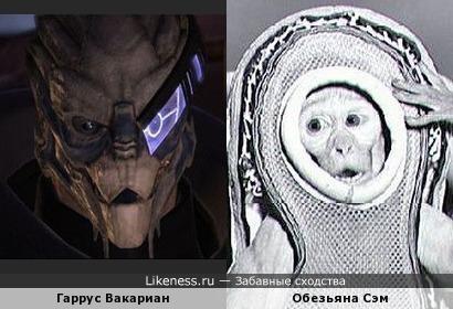 Гаррус Вакариан похож на Сэма (обезьяну - космонавта)