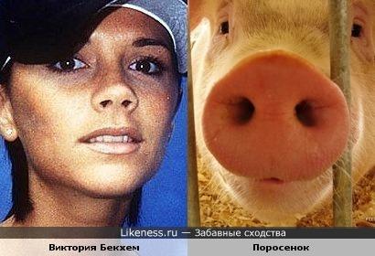 Виктория Бекхем и Поросенок