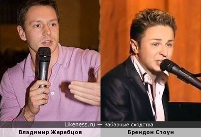 Владимир Жеребцов похож на Брендона Стоуна