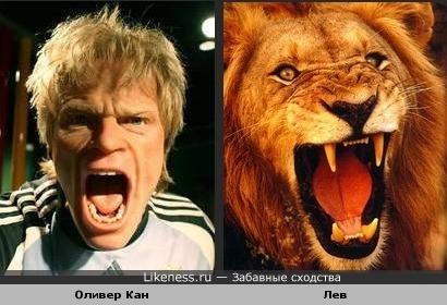 Оливер Кан похож на льва