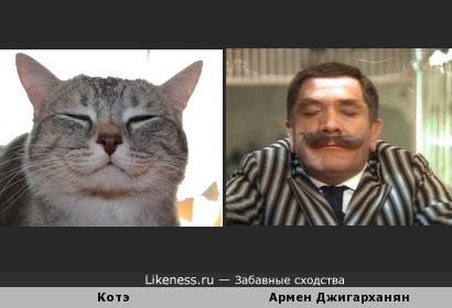"""Забавное сходство кота и Армена Борисовича из фильма """"Здравствуйте, я ваша тетя"""""""
