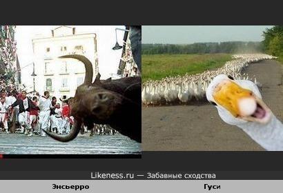 Как испортить фотографию