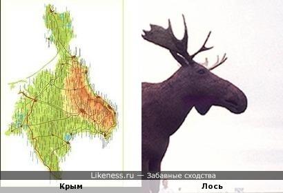 Полуостров Крым мне всегда напоминал голову лося
