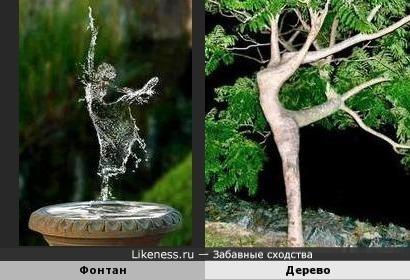 Фонтан и дерево слились в едином танце