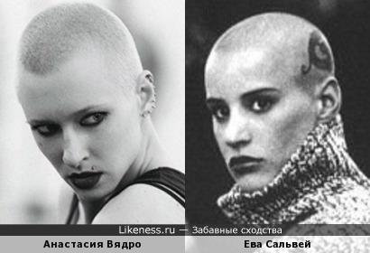 Анастасия Вядро похож на Ева Сальвей