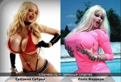 Сабрина Саброк похож на Лоло Феррари