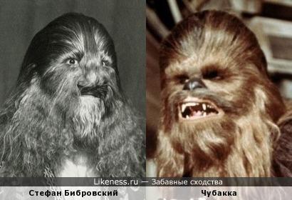 Стефан Бибровский похож на Чубакка
