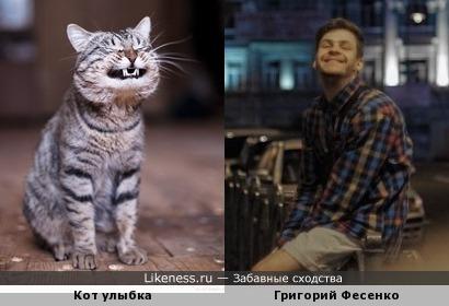 Кот улыбка похож на Григорий Фесенко