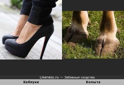Обувь на каблуках напоминает копыта
