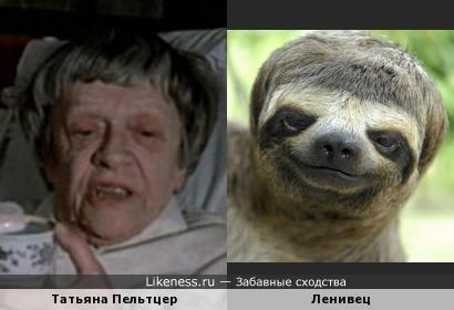 Татьяна Пельтцер причёской напоминает ленивца
