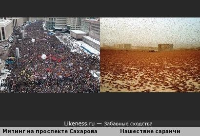 Митинг оппозиции на проспекте академика Сахарова напоминает нашествие саранчи