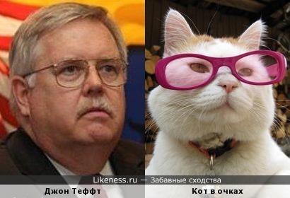 Джон Теффт и кот в очках