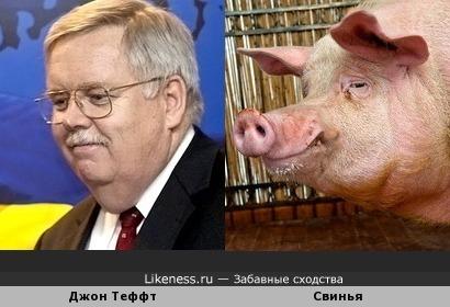 Посл США в России Дон Теффт похож на свинью