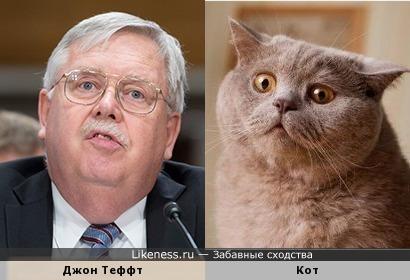 Джон Теффт похож на жирного кота