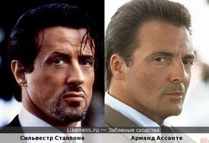 Сильвестр Сталлоне похож на Арманда Ассанте