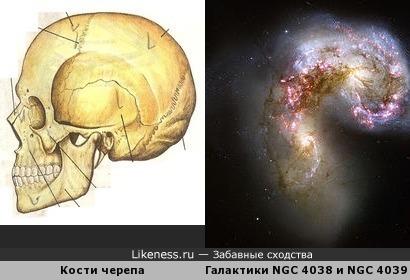 Галактика мёртвая голова