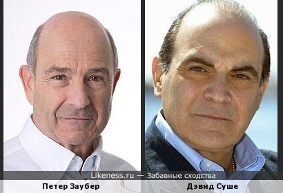 Дэвид Суше похож на Петера Заубера