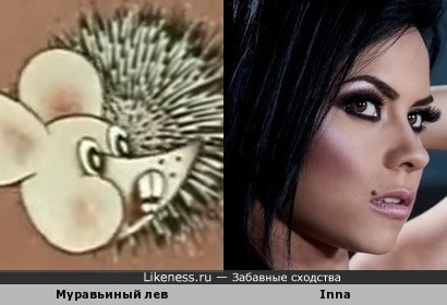 Муравьиный лев напомнил певицу Инну (Inna)