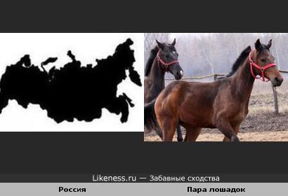 Россия и лошадиный тандем
