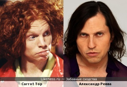Carrot Top похож на Александра Ревву