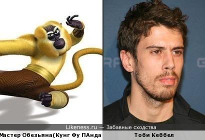 ТОби Кеббел похож на обезьяну из кунг фу панда