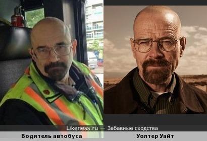 Водитель автобуса похож на Уолтера Уайта