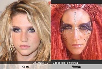 Кеша похожа на Линду
