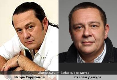 Игорь Саруханов похож на Степана Демуру