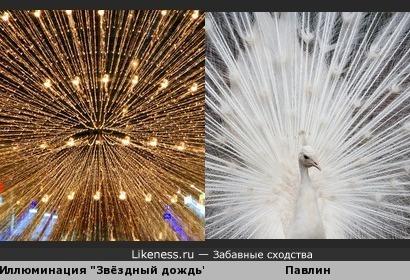 Ослепительное сходство