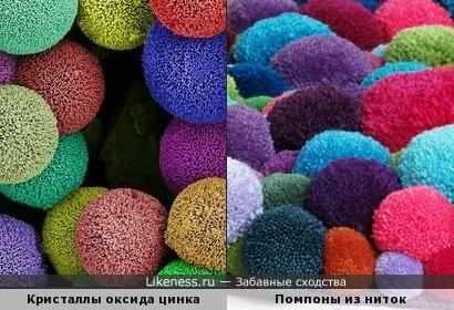Кристаллы оксида цинка под микроскопом похожи на помпоны из ниток