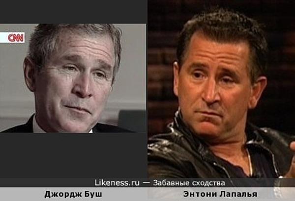 Джордж Буш-младший и Энтони Лапалья похожи