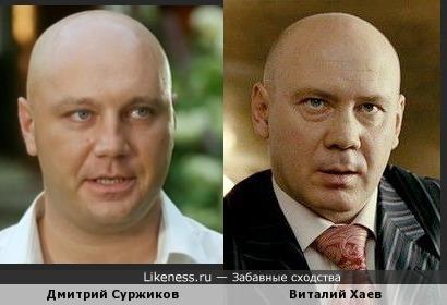 Дмитрий Суржиков похож на Виталия Хаева