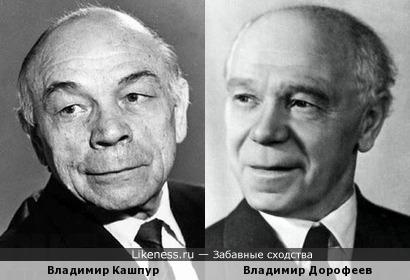 Владимиры