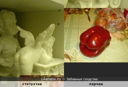 как щедра природа на формы )))