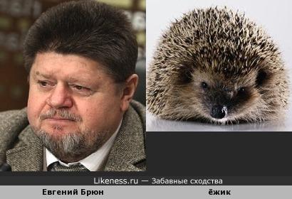 Главный психиатр-нарколог Минздрава России похож на ёжика