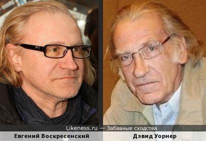 Евгений Воскресенский и Дэвид Уорнер