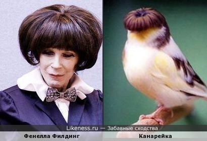 У одного парикмахера побывали...