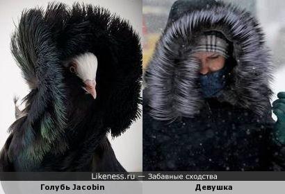 Зима... Метель...