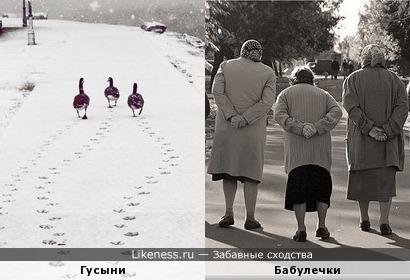 """Выйду на улицу, гляну на село, девки гуляют, и мне весело...(""""ВОЛЬНИЦА"""")"""