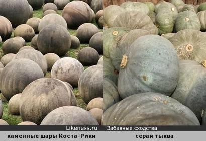 """Гигантские каменные шары Коста-Рики и урожай тыквы сорта """"Волжская серая 92"""""""