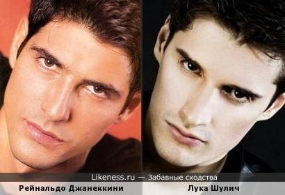 Р. Джанеккини и Лука Шулич имеют некоторое сходство